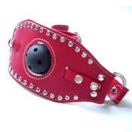 Kinky Leather Ball Gag