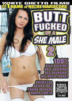 Butt Fucked By A She Male #02