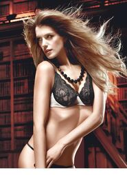 Baci Black Lace Bra with Underwire