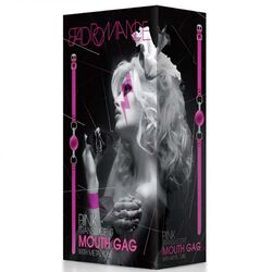 Bad Romance Pink Translucent Mouth Gag with Metal Tube