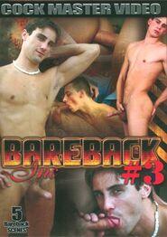 Bareback Inc #03