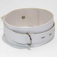 BDStyle Collar Adjustable White Light PVC
