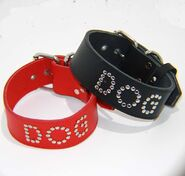 DOG Leather BDSM Collar