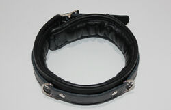 Fetters Thick and Padded Bondage Collar Light PVC