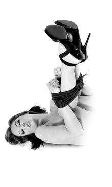 Fetish Fantasy Limited Edition Bondage Rope