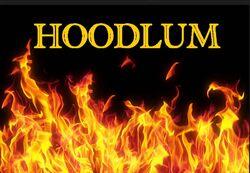 """Hoodlum 13\"""" Veiny Dong Flesh"""
