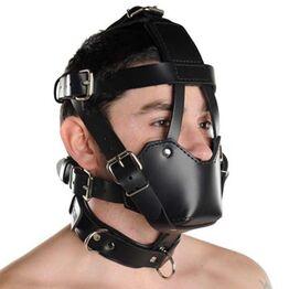 Head Harness & Muzzle Light