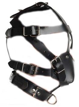 Head Harness & Muzzle Light