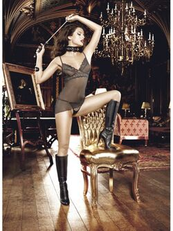 Mesh And Lace Chemise OS Black