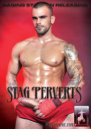 Stag Perverts