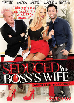 Seduced By The Boss's Wife