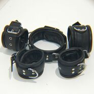 Training Of O Leather Wrist & Ankle Restraints