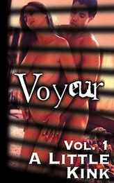 Voyeur Vol 1 A Little Kink