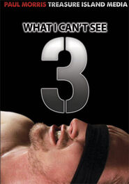 What I Can't See # 3