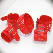 Wild Heavy Duty Collar with Ankle and Wrist Cuffs